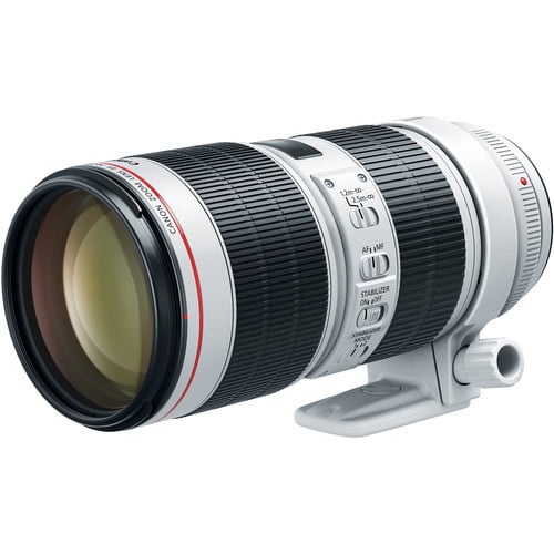 The Best Canon Lenses, From Wide-Angle to Telephoto