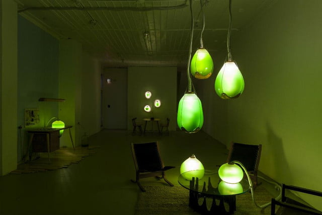 microalgae lamps can light your home and are edible algae lamp 07