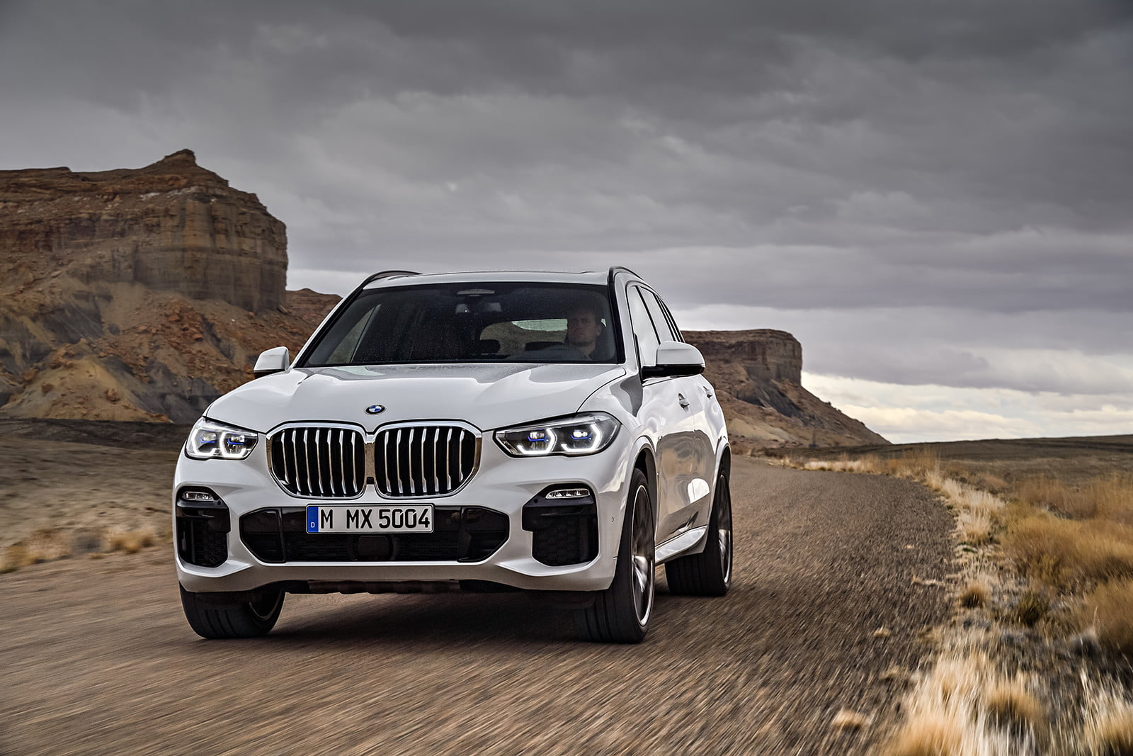 The 2019 Bmw X5 Is Here To Replace That Aging Family Suv