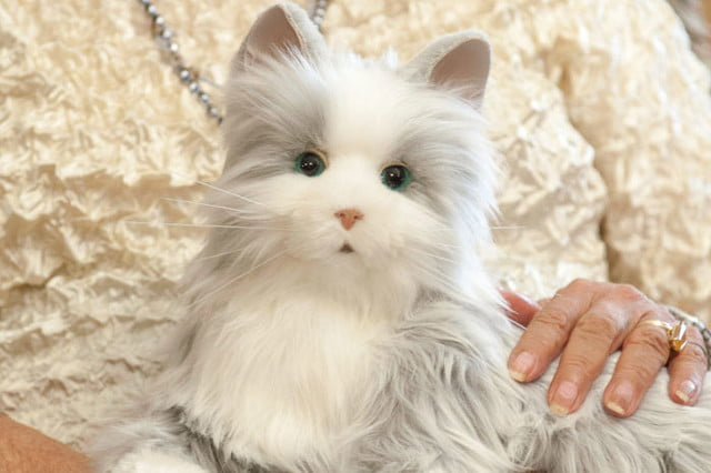 there are now robotic cats that serve as companion animals pet 5