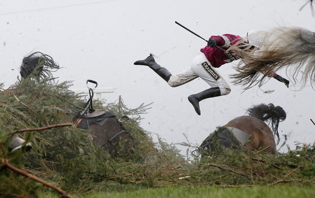 world press photo contest 2017 grand national steeplechase 2016