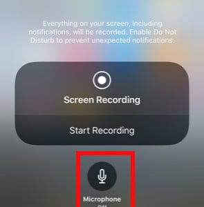 How to Record the Screen on Your iPhone   Digital Trends