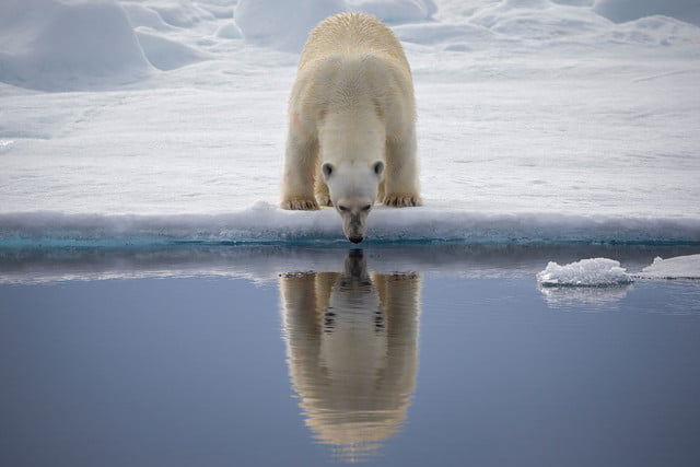 how to photograph the arctic with joshua holko interview h9p2423 edit
