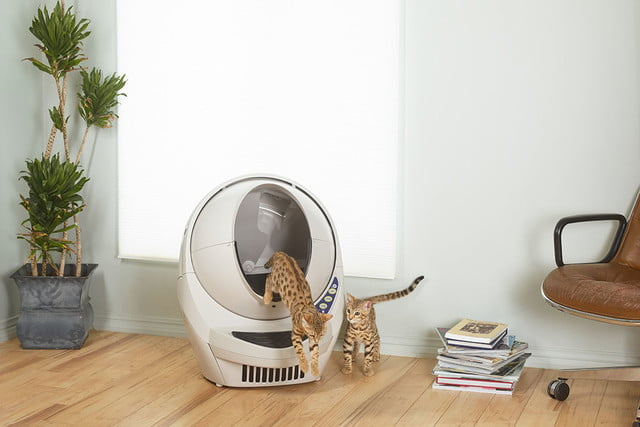 5 Household Robots That Will Do Annoying Chores For You