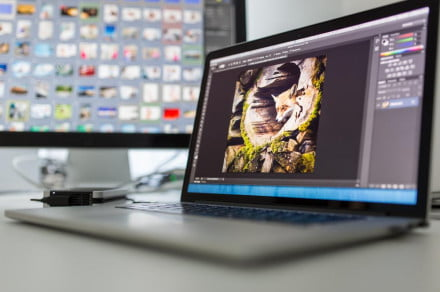 The best free photo-editing software for 2020