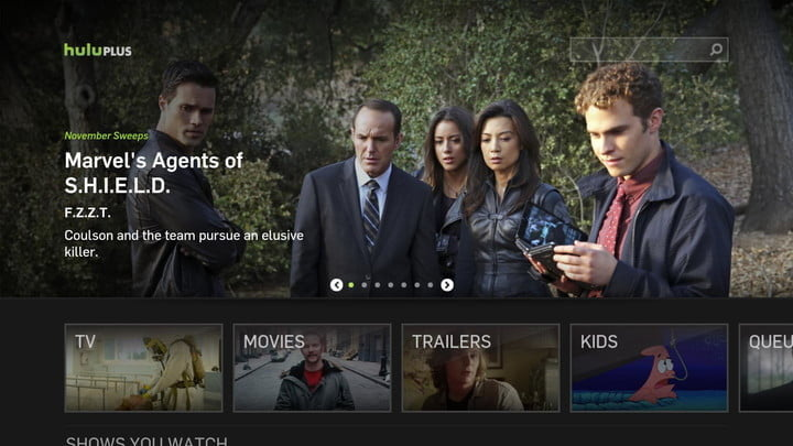 Hulu Plus interface