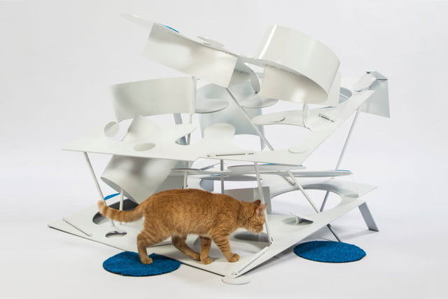 architects for animals design amazing cat houses lehrerarchitects photo credit meghan bob photography