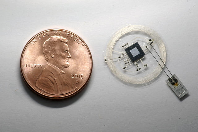 tiny brain sensors dissolve completely after use nfc pressure sensor with coin 01