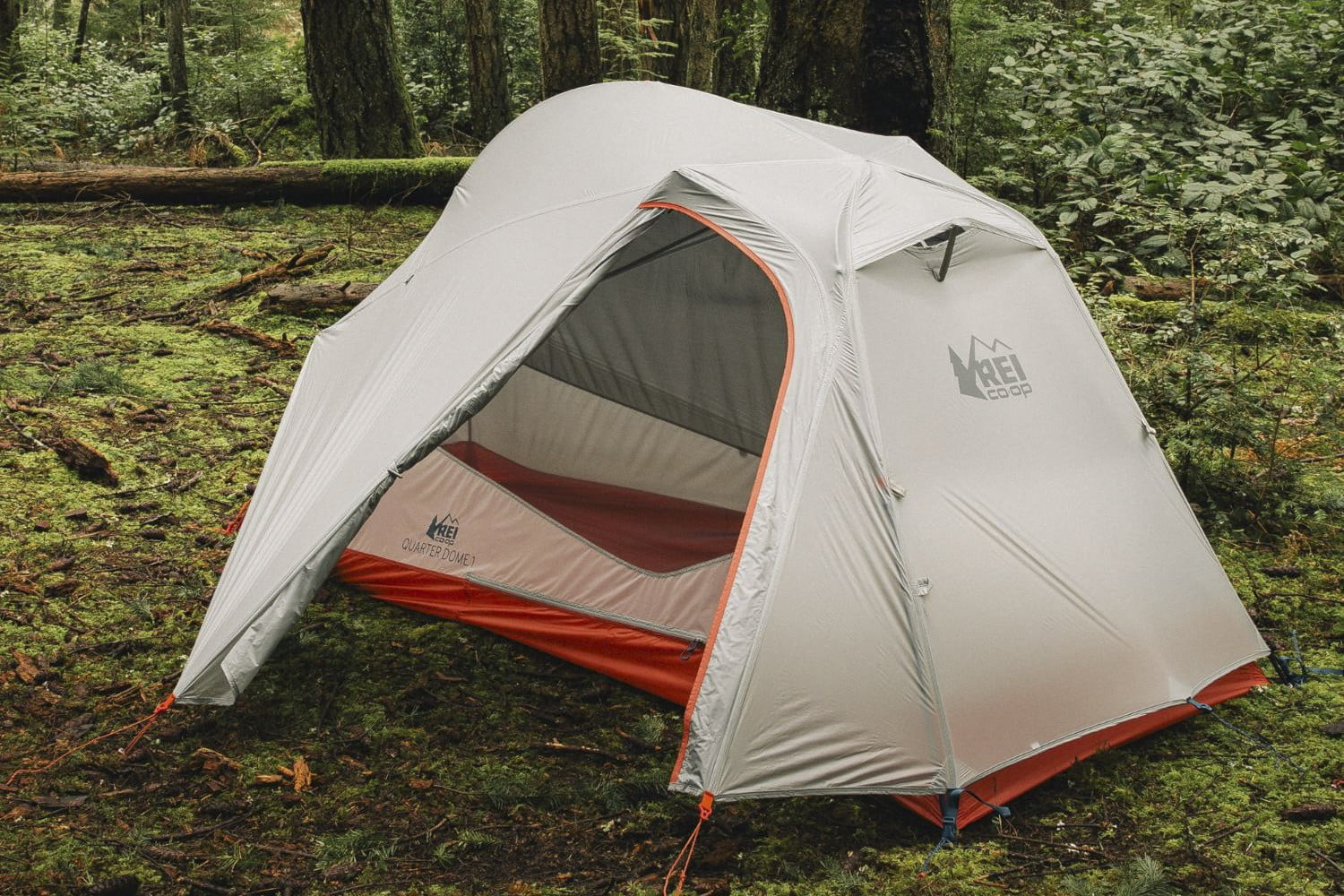 REI Quarter Dome 1 & The Best Tents for Backcountry and Car Camping in 2018 | Digital Trends