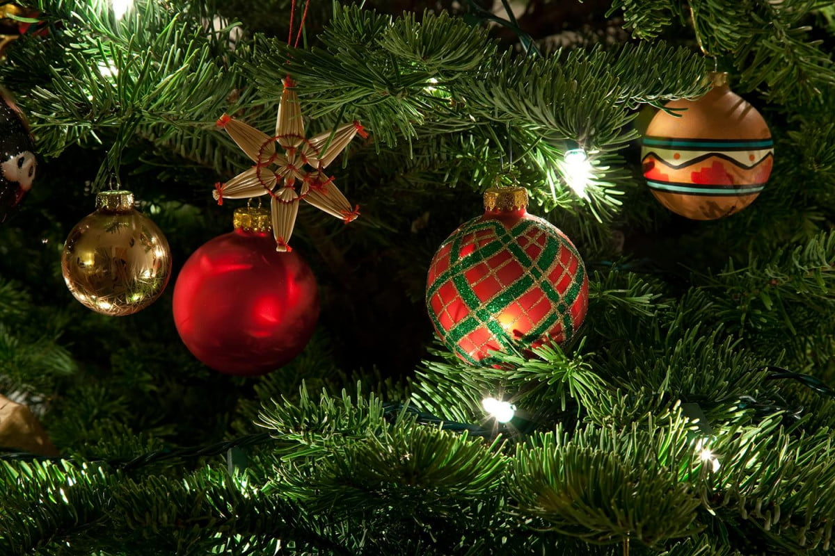 What Should You Do With Your Christmas Tree?