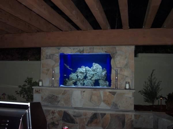 homes with their own shark tanks symphony pools tank 0471