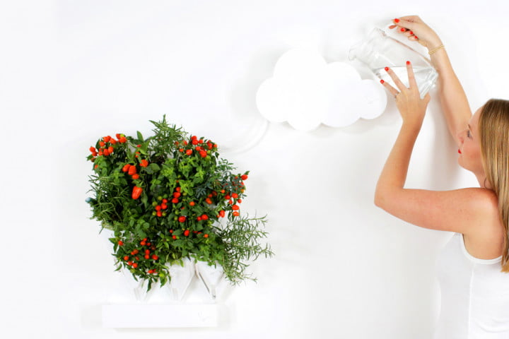 plug plant is an easy to grow vertical garden digital trends