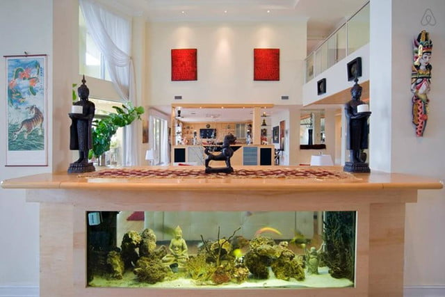homes with their own shark tanks villa deep blue 13 copy